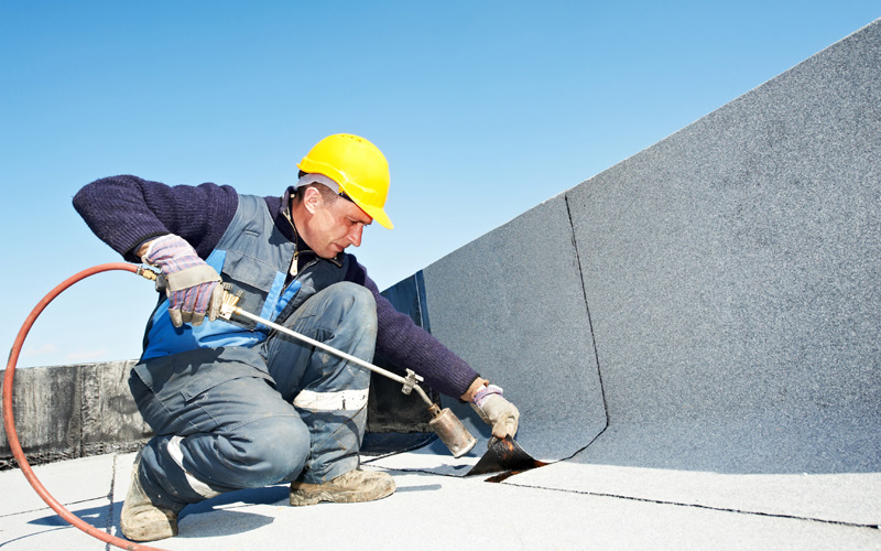 Roof Care: What To Do?